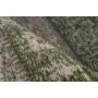 Kép 2/3 - Pacino 990 Zöld szőnyeg